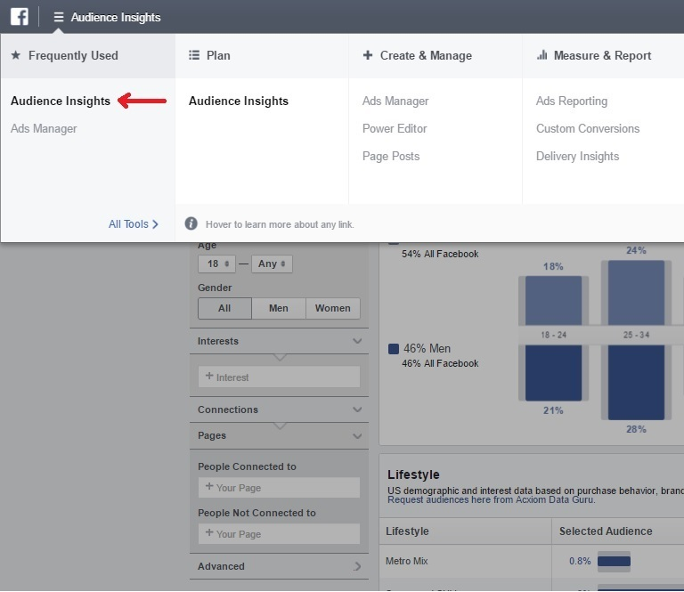 Facebook Video Ads Audience Insights