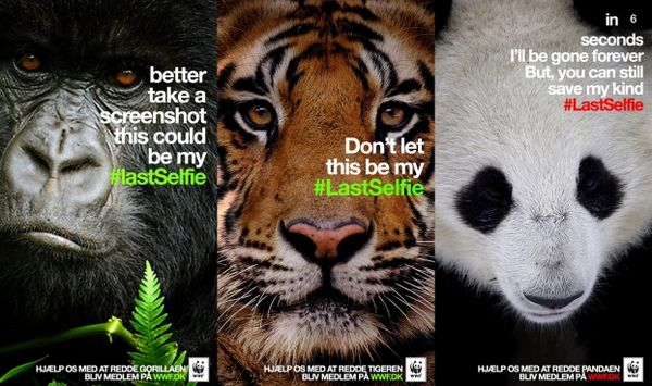 WWF Snapchat Campaign