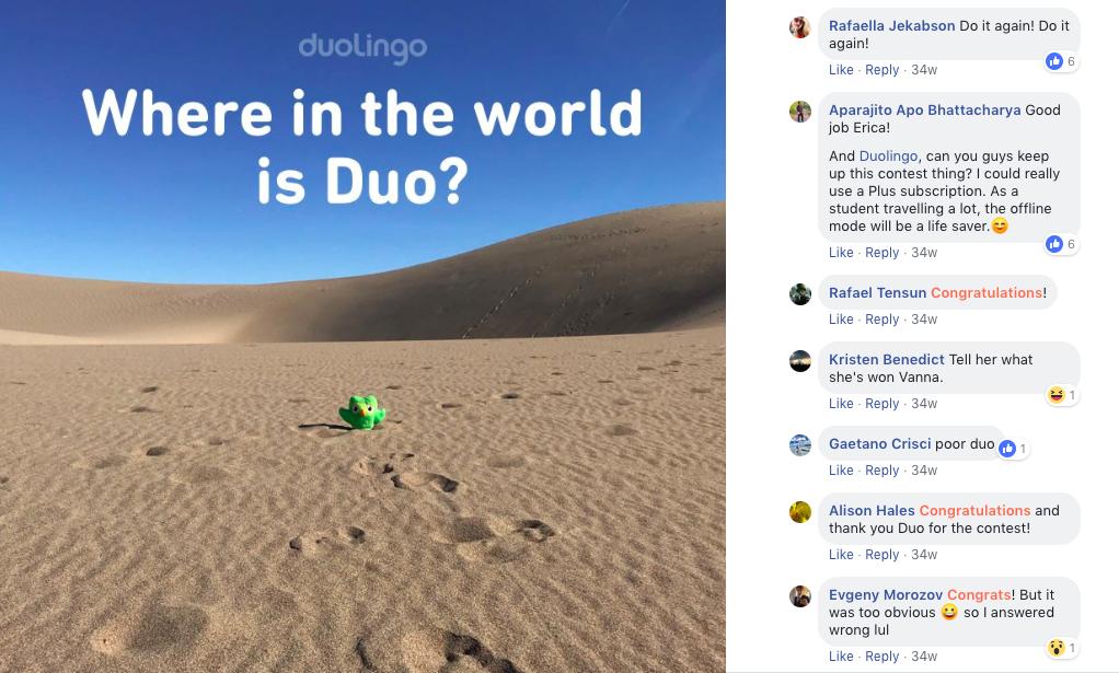 duolingo-contest