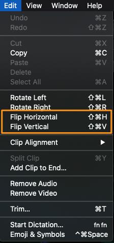 select flip horizontal or flip vertical