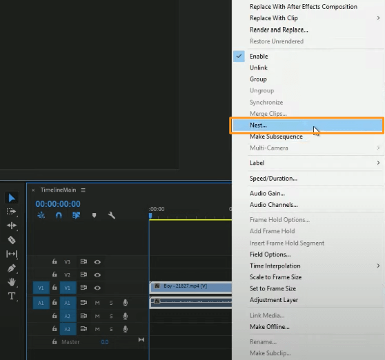 select nest from the dropdown menu